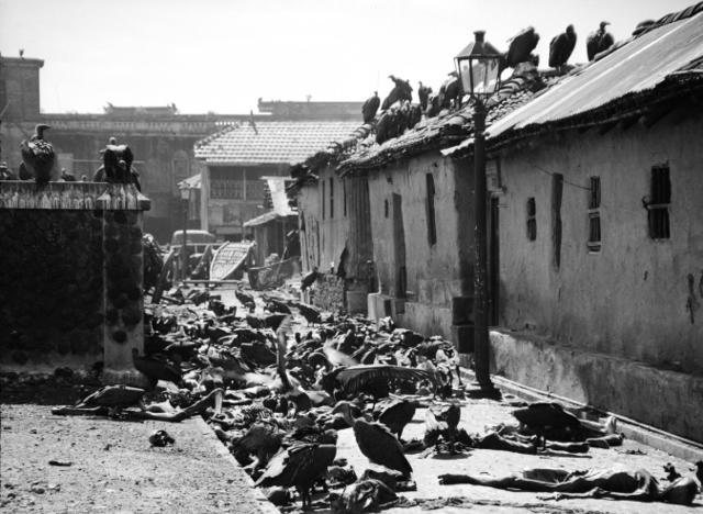 Calcutta Riots