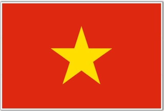 North Vietnamese Success