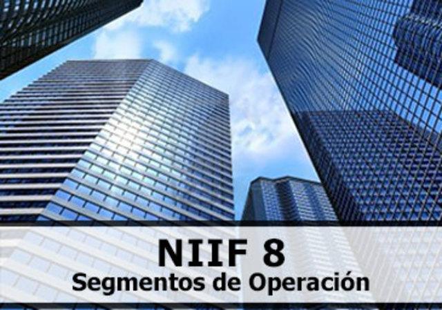 NIIF-IFRS 8