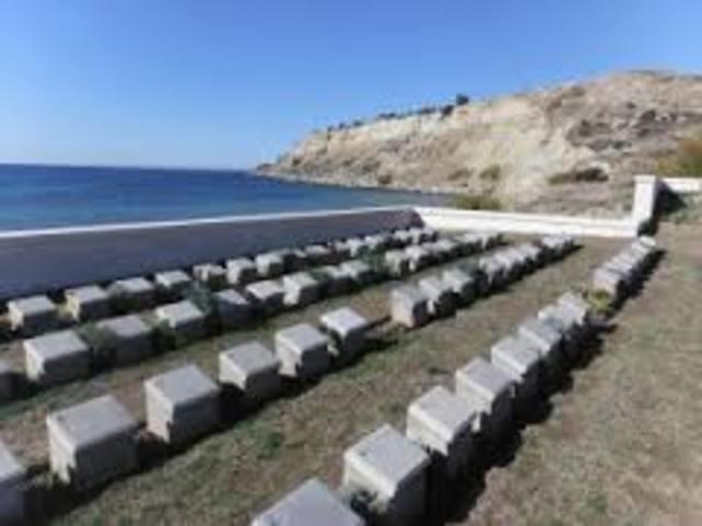 Cost of Gallipoli