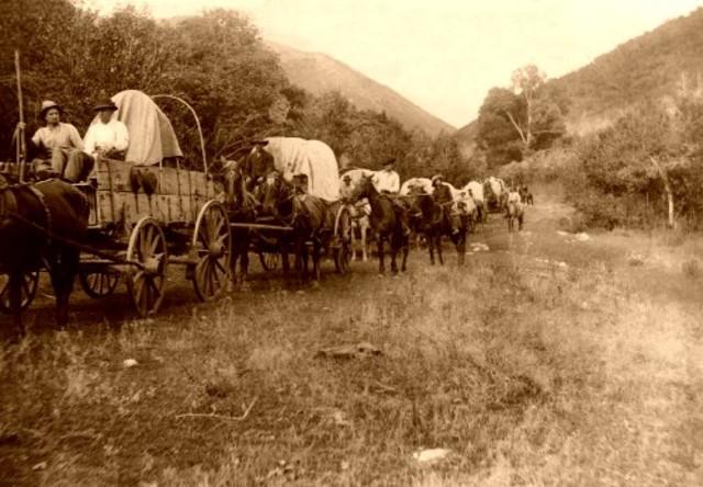 Environment/The Oregon Trail
