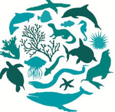 7ma reunión ministerial sobre Diversidad Biológica