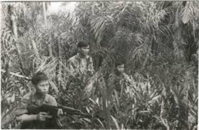Ambush Vietcong