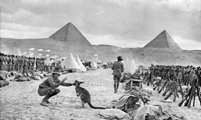 First Australian Troops are sent to Egypt