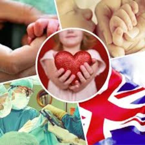 Se crean grupos de Atención primara a la Salud
