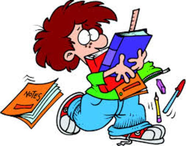 Identificar y poner en común los objetivos y contenidos curriculares.
