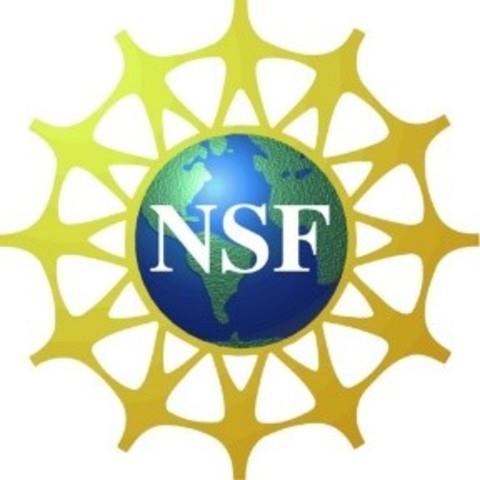(1991) NSF