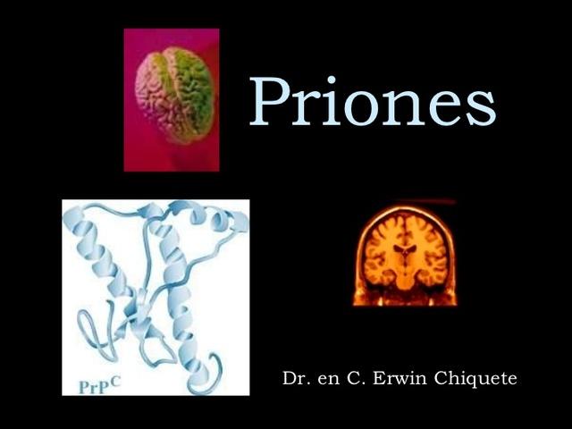 PRIONES