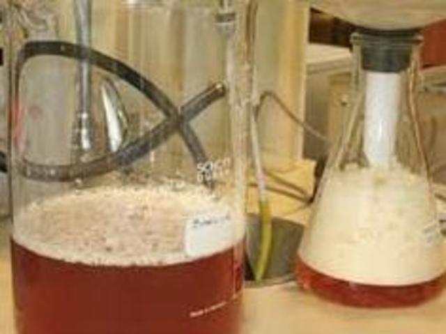 PRIMEROS EXPERIMENTOS CON MICROORGANIMOS PARA LA FERMENTACION