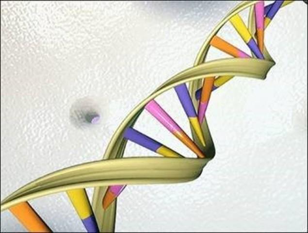 Descubrimiento del Acido Desoxirribonucleico.