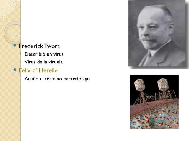 Félix d'Herelle descubre más virus bacteriófagos.