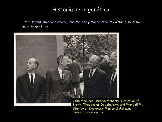 Oswald Avery, Colin MacLeod y Maclyn McCarty demuestran que el DNA es el material genético.