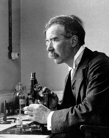 Sir Almroth Edward Wright, accion opsonizante de anticuerpos