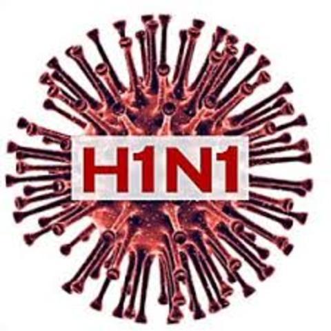 Gripe A/H1N1
