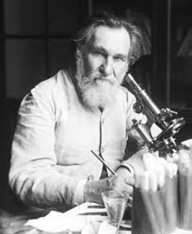"""Ilya Ilich Mechnikov    fagocitosis en estrellas de mar y pulgas de agua, estableció, a partir de 1883, su """"Teoría de los fagocitos"""""""