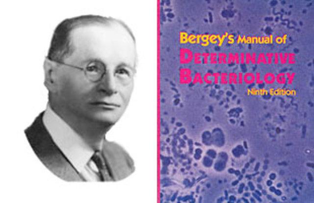 Creación de «Manual Bergey de Microbiología».  David Bergey