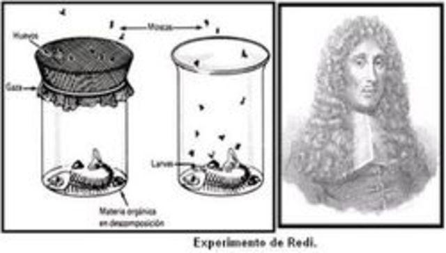 generacion espontanea en gusanos