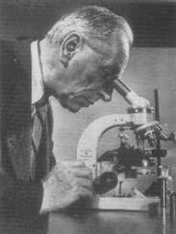 desarrollo del microscopio de contraste