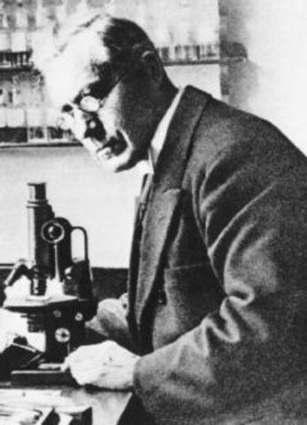 Martinus Beijerinck: descubrimiento del virus