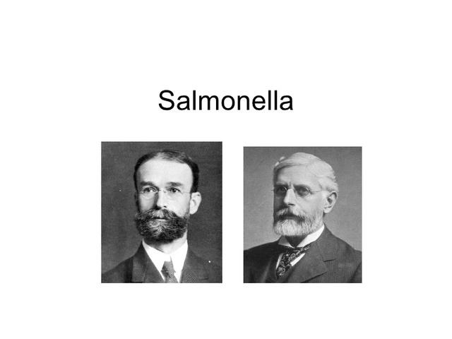 salmon y theobald smith  desarrollaron vacunas efectivas con microorganismos muertos