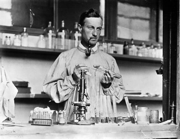 gruber , max y durham , herbert  demostraron la reaccion de aglutinacion del vibrio cholerae y del bacilo de la tifoidea por antisueros especificos