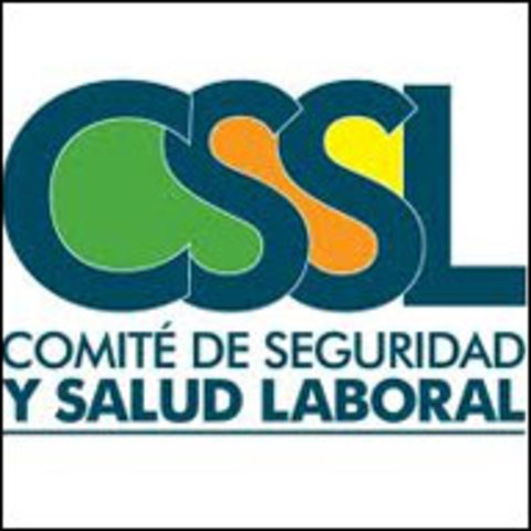 Resolución 2013 Comités  de Medicina, Higiene y    Seguridad Industrial.