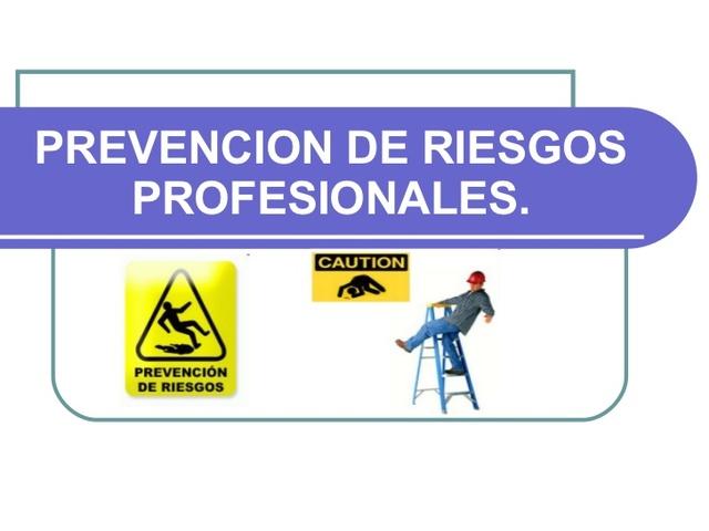 Decreto 1295. Sistema General de Riesgos Profesionales