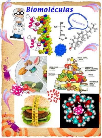 clasificacion de biomoleculas