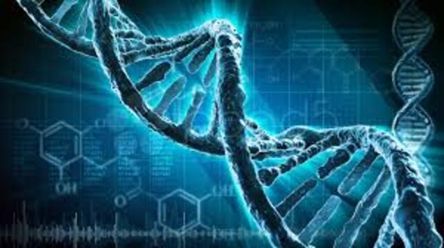 Se propone la estructura del ADN