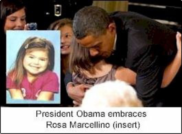 Rosa's Law.