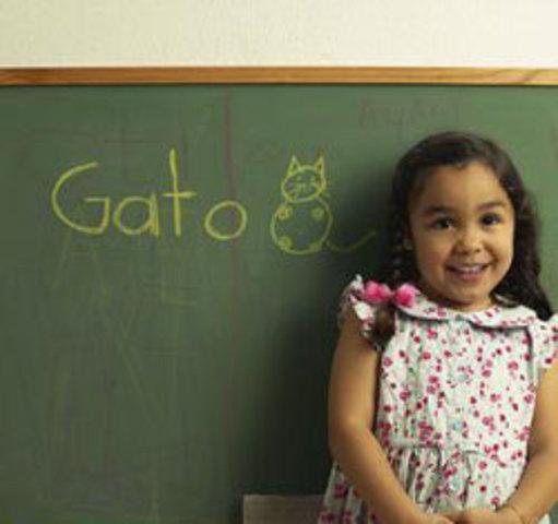 Gomez v. Illinois state board of education