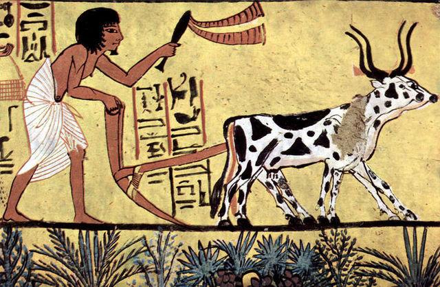 The Neolithic Revolution (10,000 BCE)