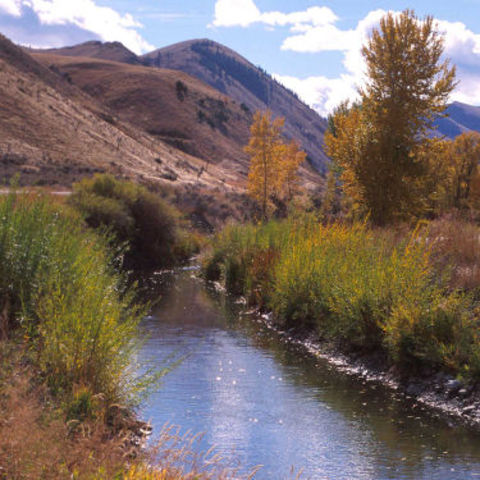 Naming of the Sacagawea River