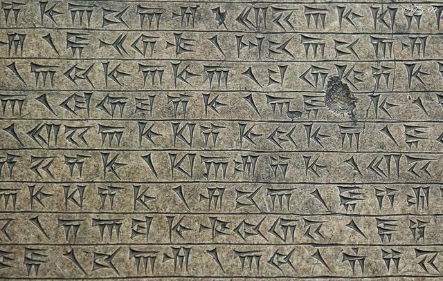Consecuencias de la Prehisotria