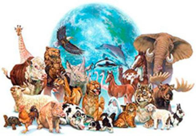 Congreso Internacional de Zoología