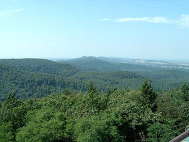 9 d.c.  Batalla del bosque de Teutoburgo.