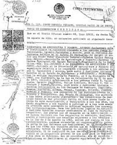 decreto sobre colonización y compañias deslindadoras