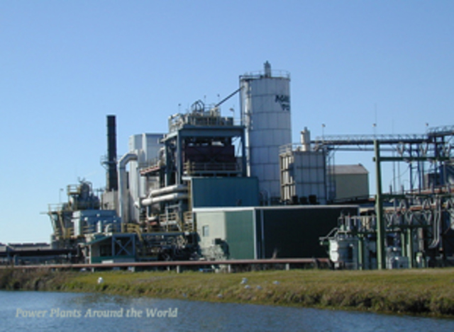 The World's First Commercial Biomass Power Station
