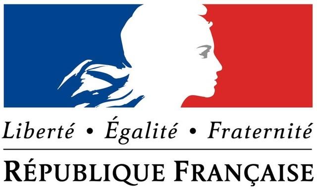 Francia-La constitución francesa