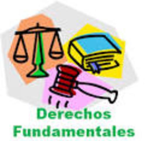 Defensa de los derechos fundamentales