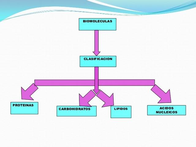 Clasificación de Biomoléculas