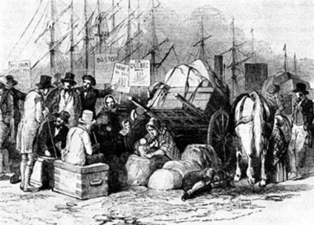 Height of Irish immigration