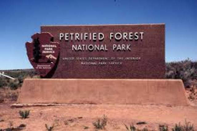 Petrified Forest now a National Park