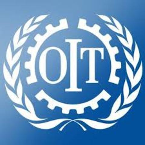 Consideraciones en torno a las actas constitutivasde los organismos especializados de la onu que tienenrelación con los Derechos Humanos