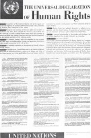 La elaboración de la Declaración de DerechosHumanos de la onu de 1948 y los pactosinternacionales de 1966