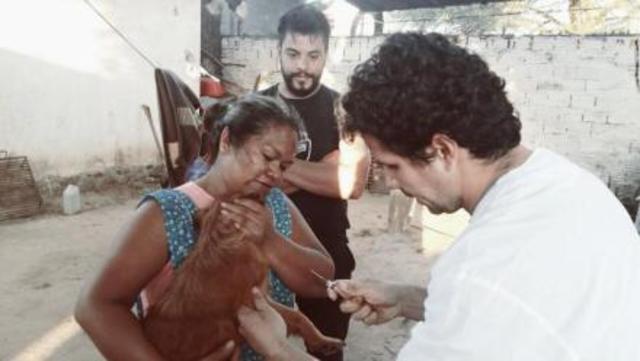 Esterilización de mascotas en el Barrio Jigote: primer round