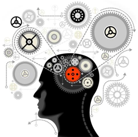 Se impone el cognitivismo