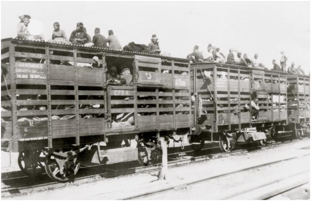 The Trip to Birkenau