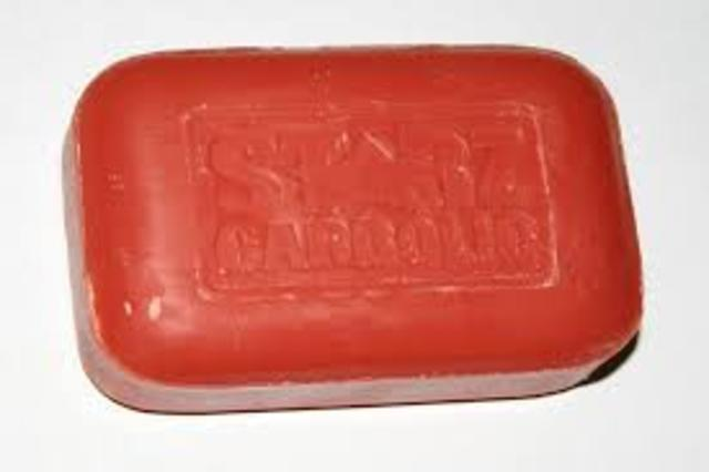 Jospeh Lister insited on using carbolic soap to sanatize before moving onto other patients