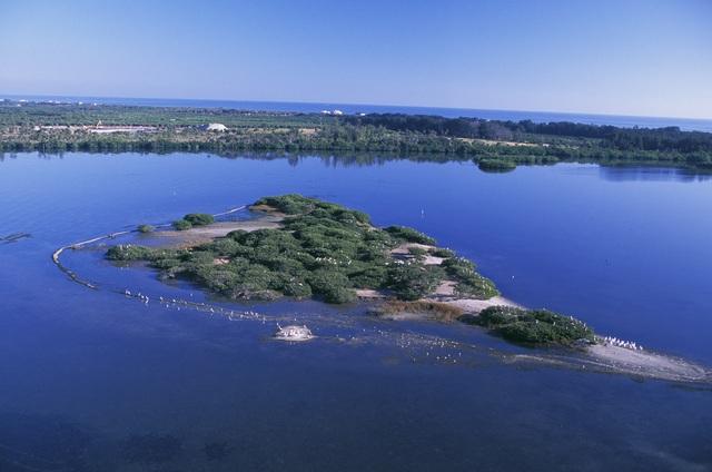 Establishment of Pelican Island